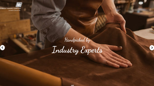 leather footwear manufacturing company